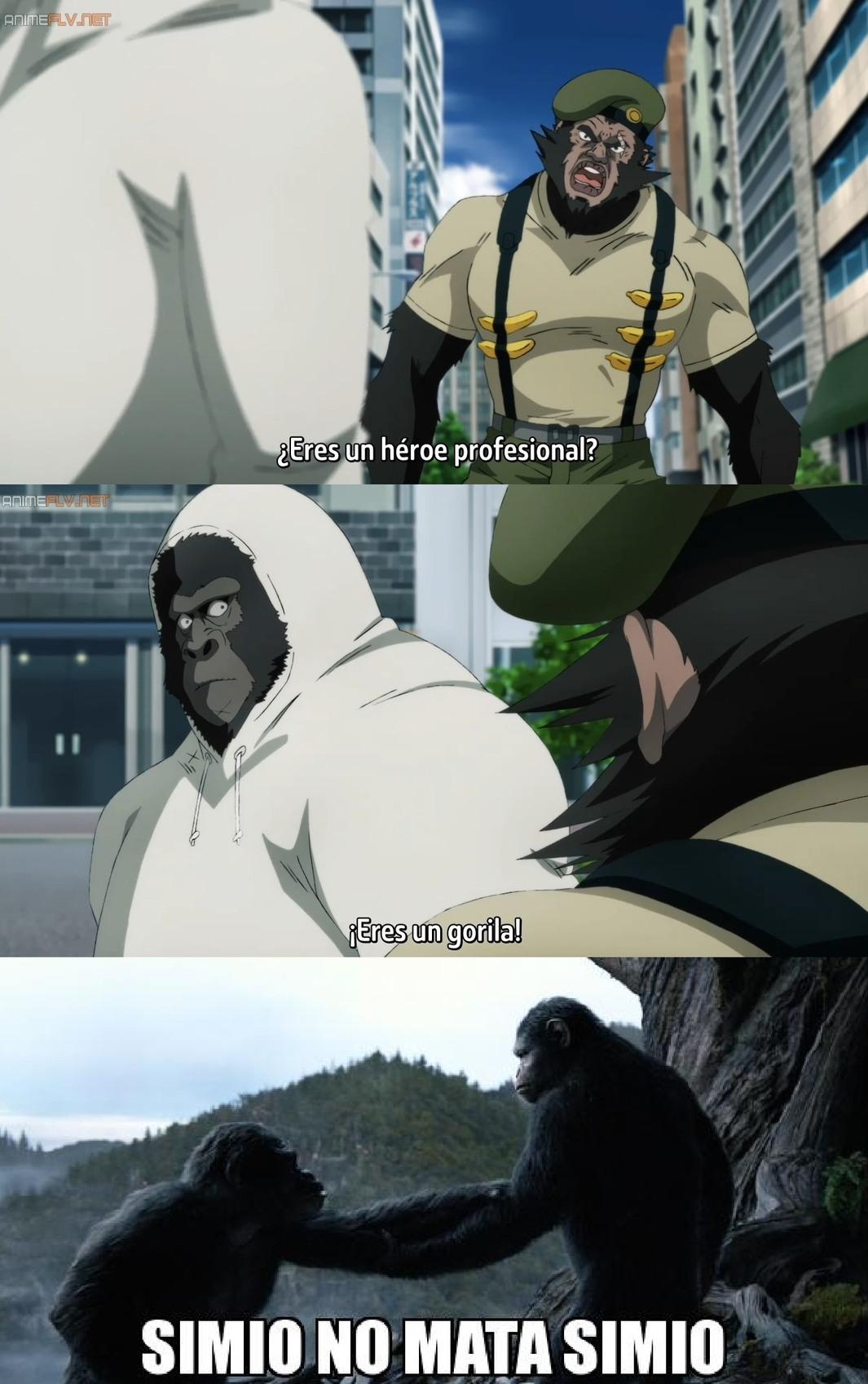 El primero gorila parece Chavez - meme