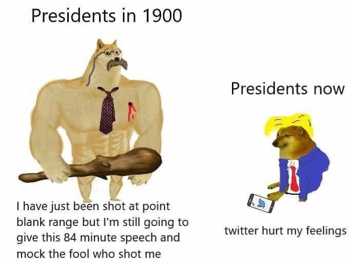 twitter hurt mwa feewings - meme