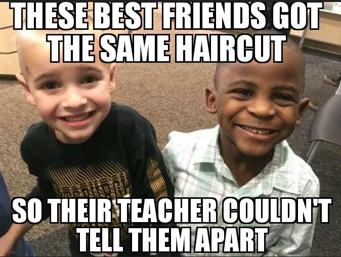 Clever little dudes