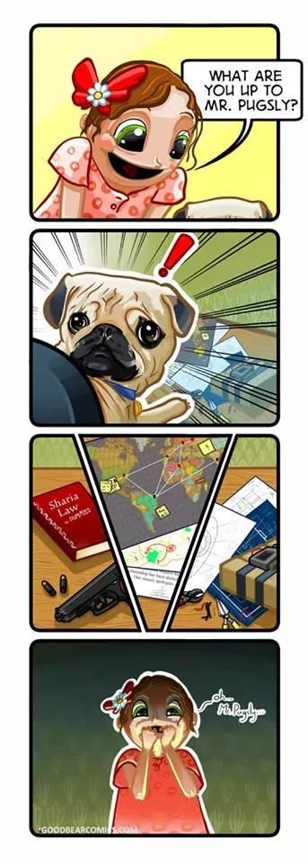 Pug lyfe - meme