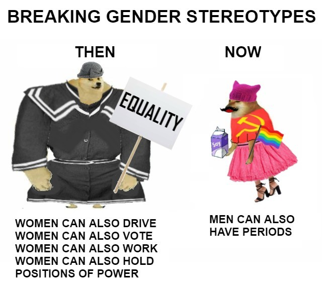 Modern Feminists be like - meme