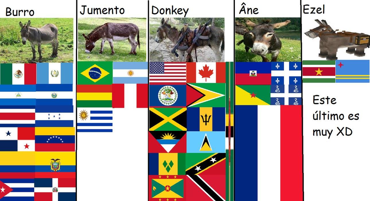 Burro, en diferentes idiomas de América | No porque estén en Memedroid, no vayan a aprender cultura :)