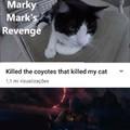 """""""Matei os coiotes que mataram o meu gato."""""""