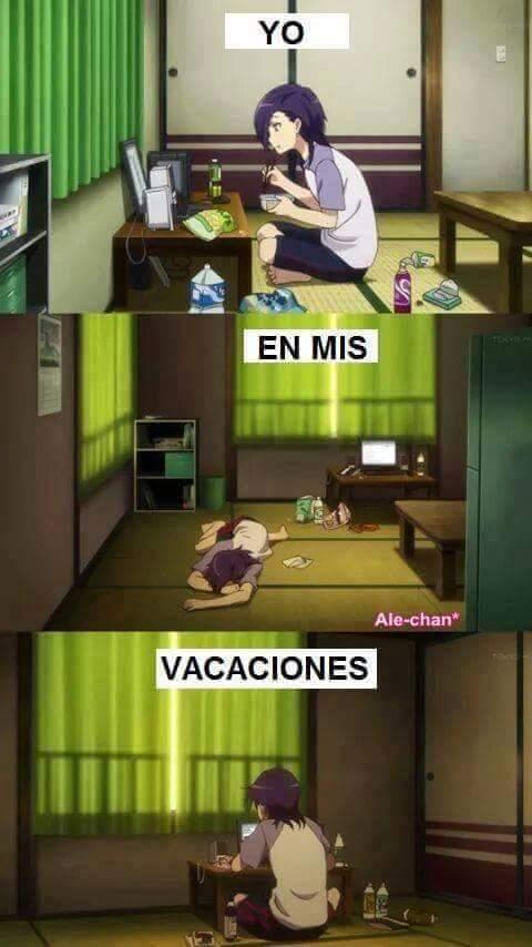 Vacaciones pro - meme