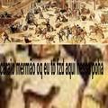 Humanos são burros
