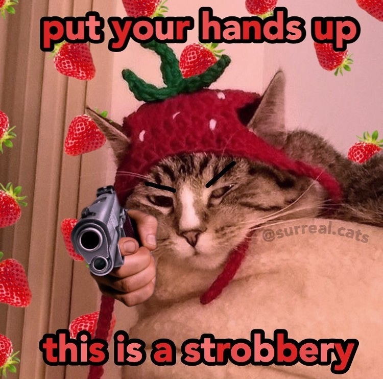 angry pussy - meme
