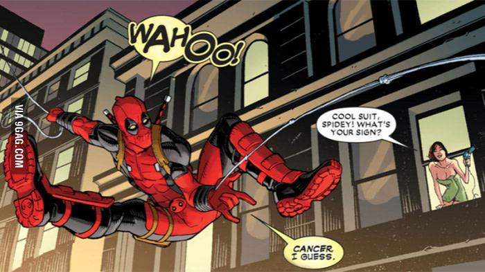 Spiderpool - meme