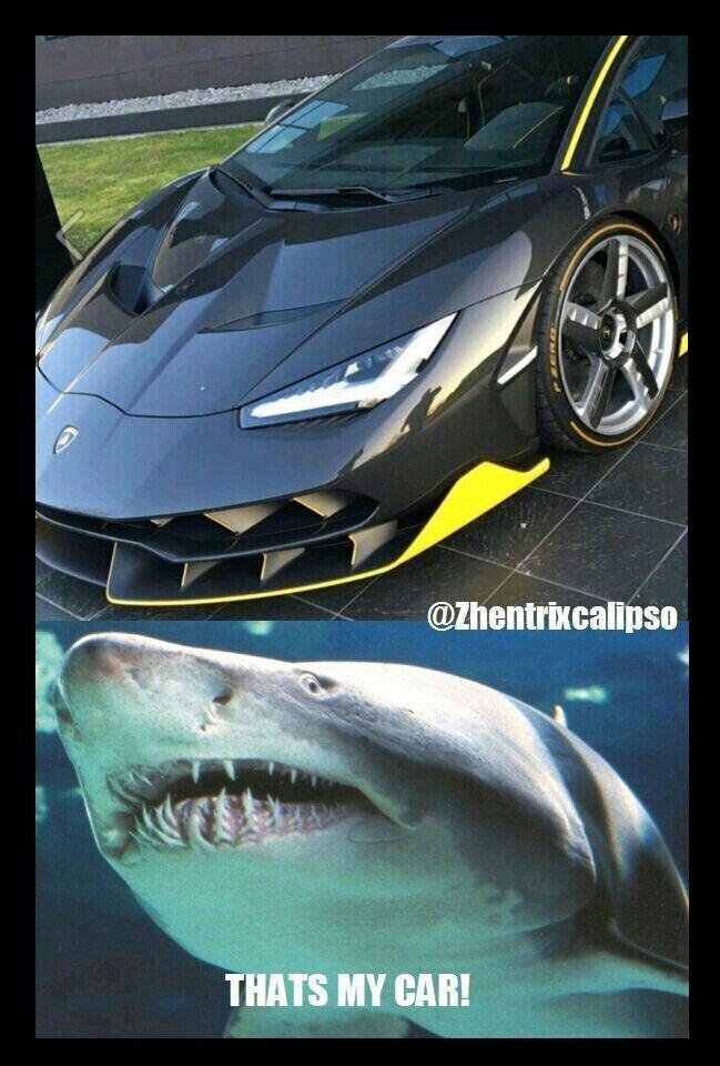 Carro tubarão! - meme
