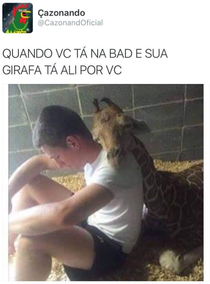 Quem não tem cão, caça com girafa, não pera.. - meme