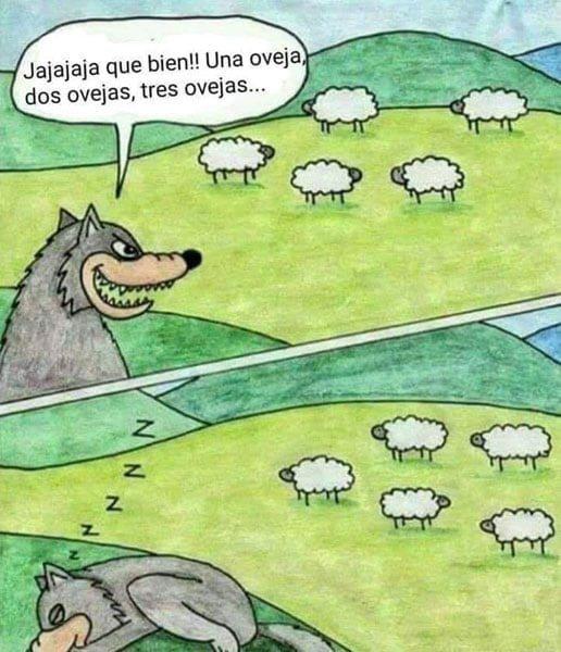 se durmio el lobo - meme