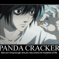 Panda cracker.