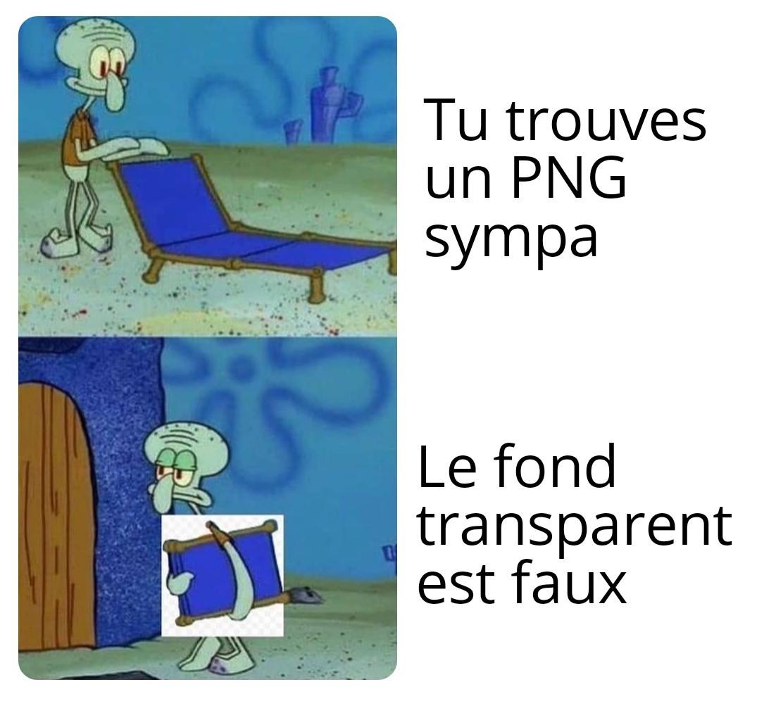 M O N T A J - meme
