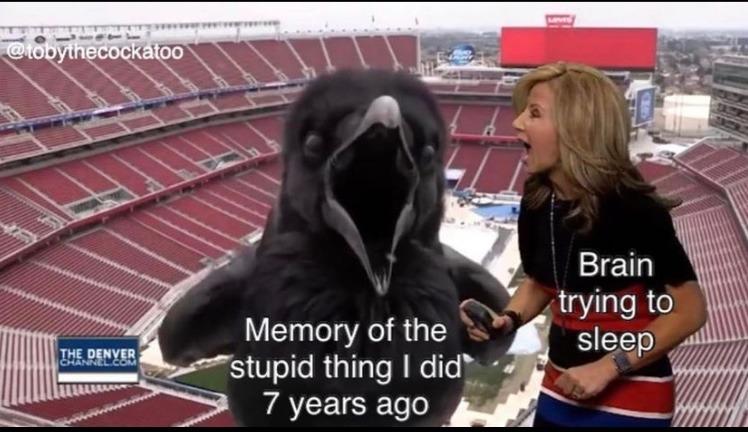 giant crow - meme