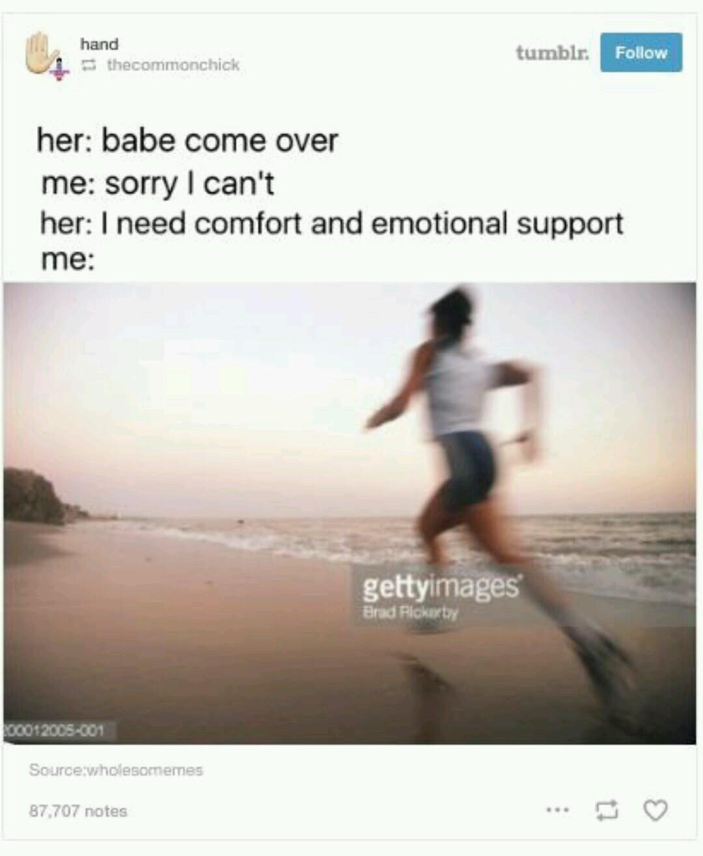 Pure memes