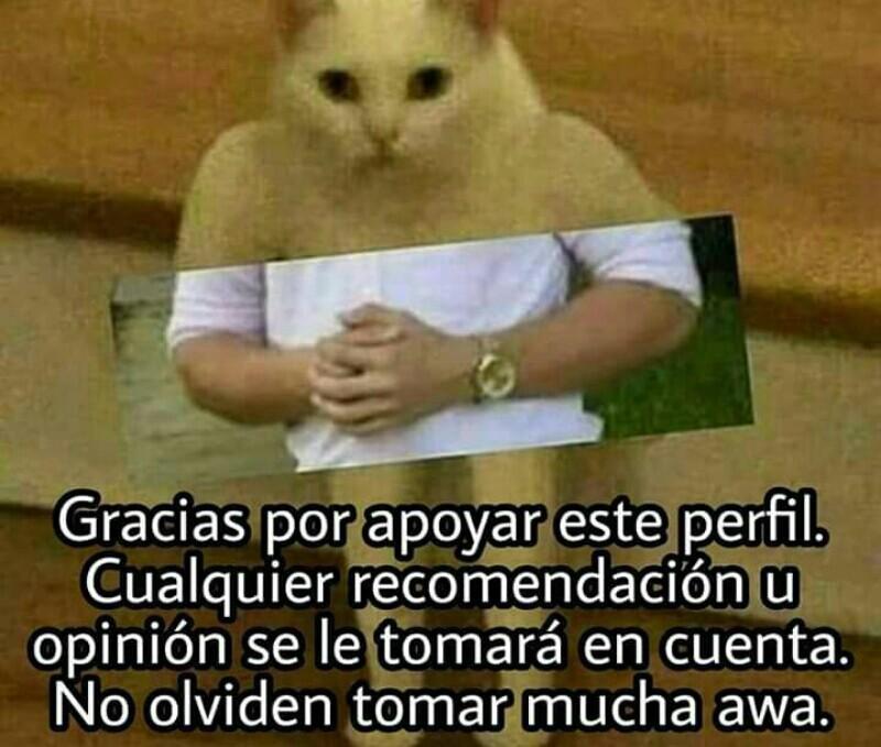 Gracias bandamax :) - meme
