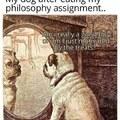 philosophy dog