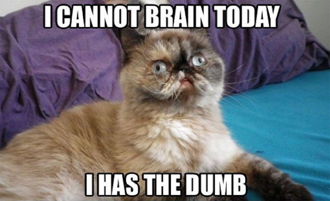 me every morning - meme