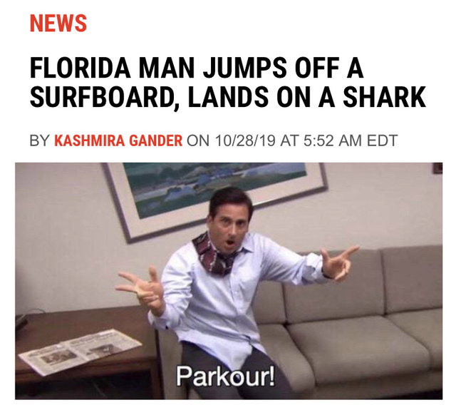 Florida man jumps off a surfboard, lands on a shark - meme