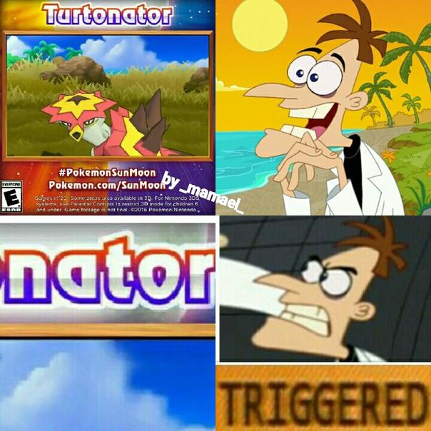 Tortugainator - meme