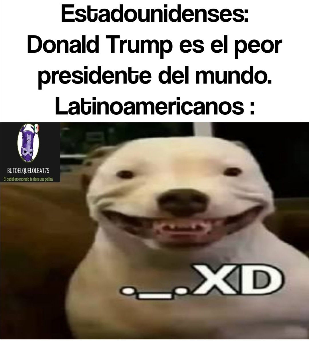 . _. Xd - meme