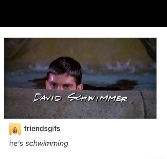 schwim David, schwim - meme