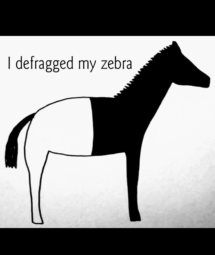 Must be a Microsoft zebra - meme