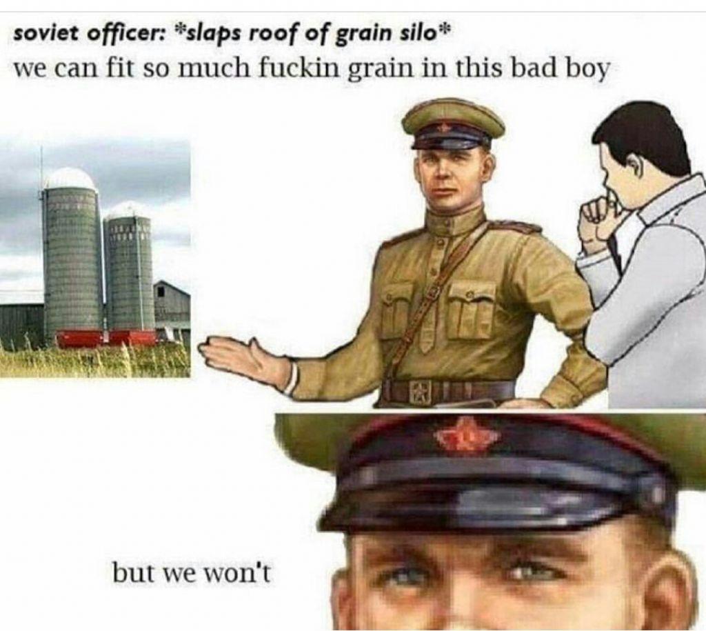 dongs in a silo - meme