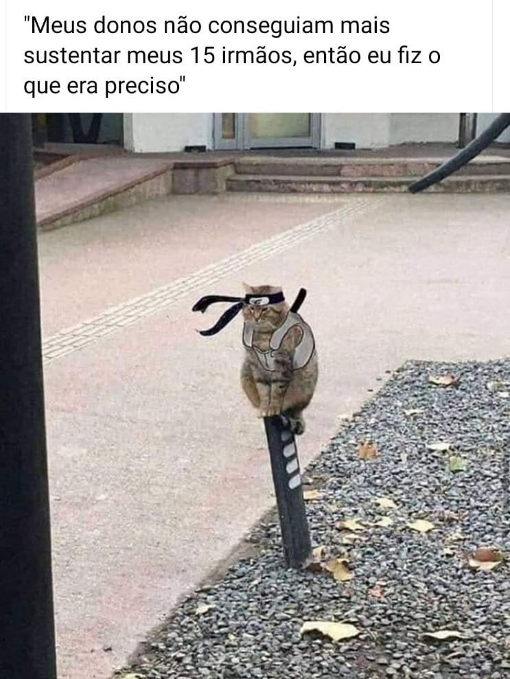 Uchiha chaninho - meme