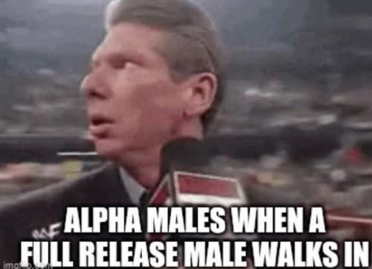 A true challenger - meme
