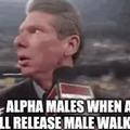 A true challenger