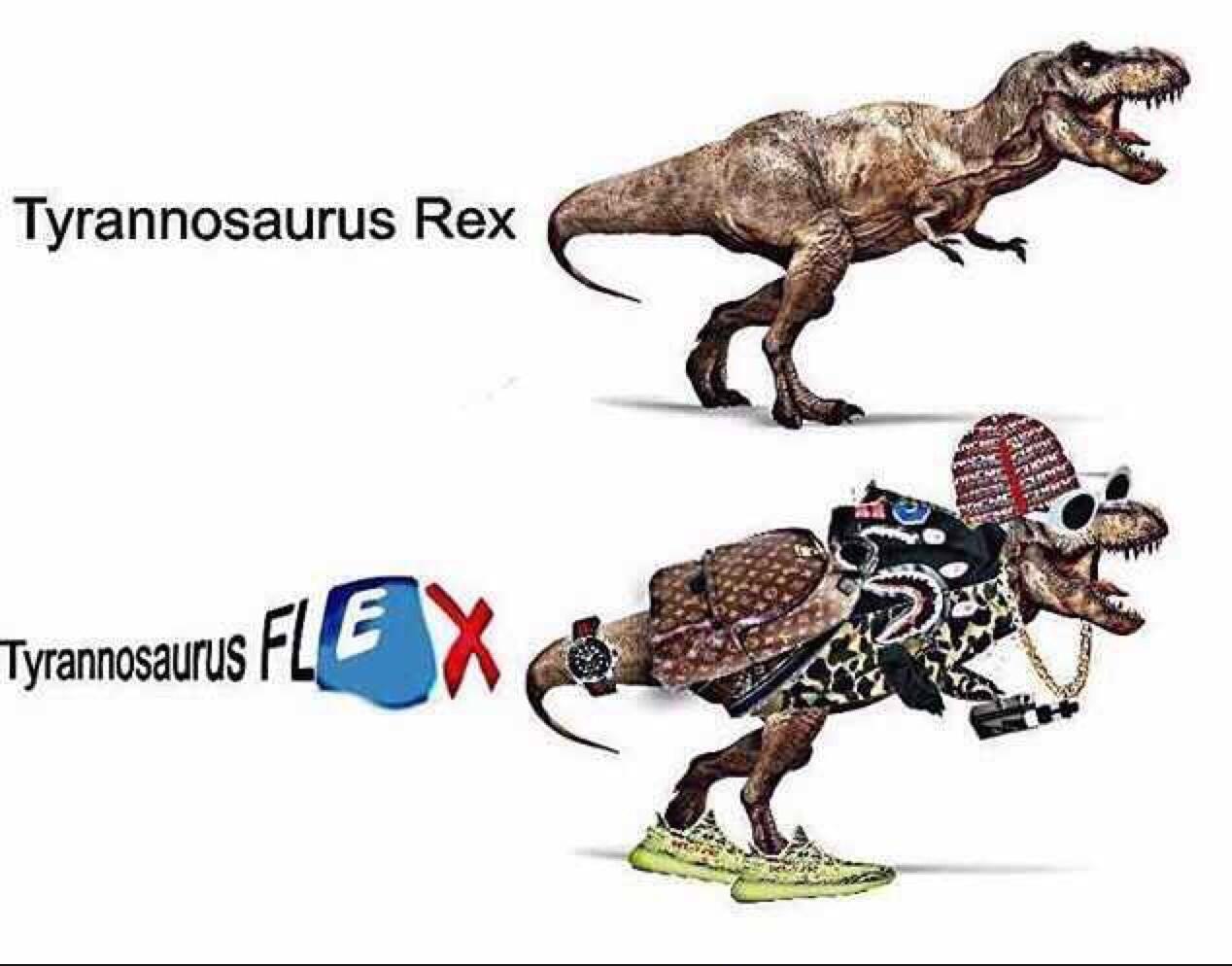 rice gums favourite dinosaur - meme