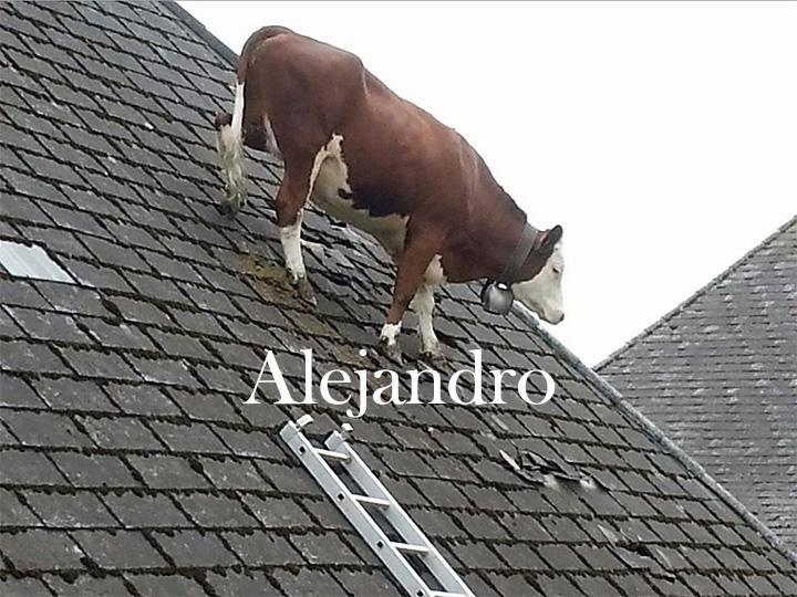 You've heard of Juan, get ready for... - meme