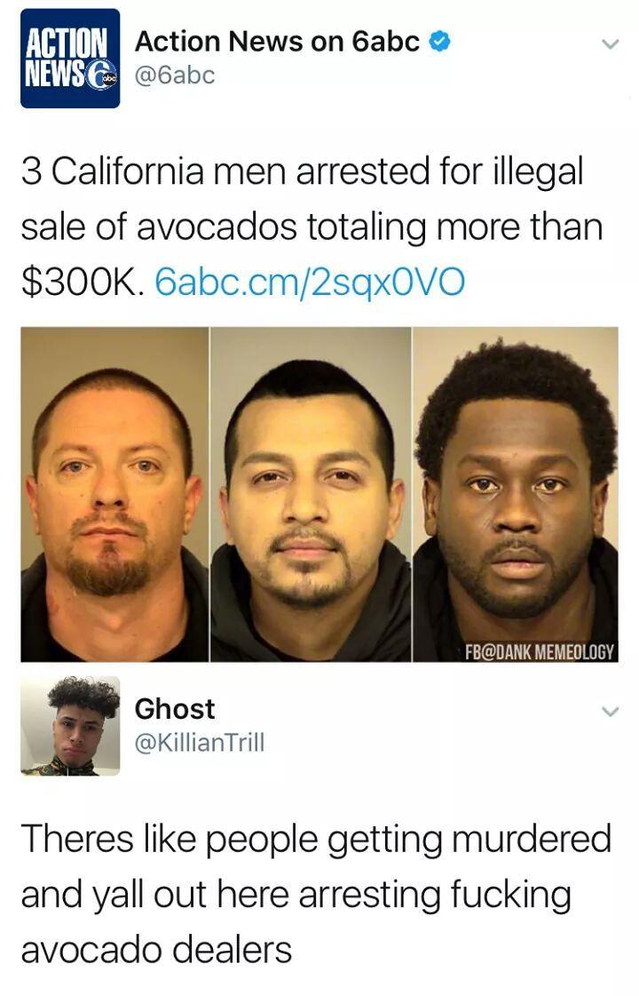 Fucking avocado - meme