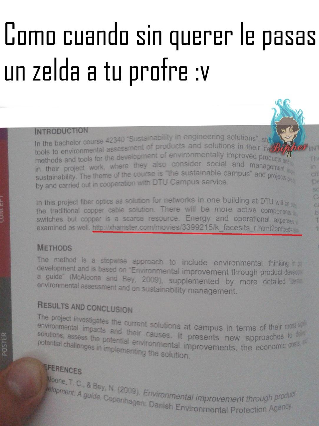 Zelda rufian >:v - meme
