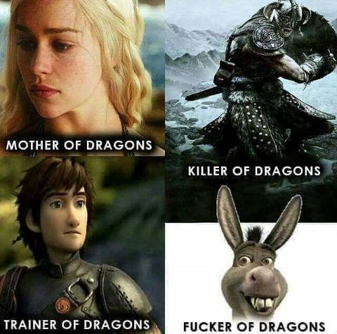 Fucker of dragons! - meme