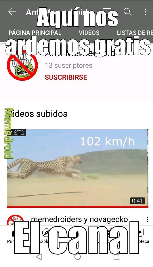 Ardidodroiders - meme