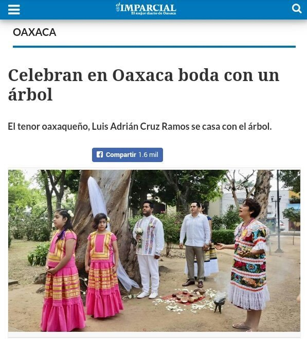 Oaxaca potencia - meme