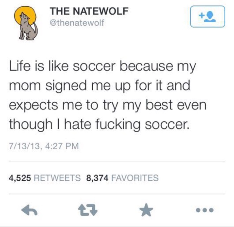 Life is like soccer - meme