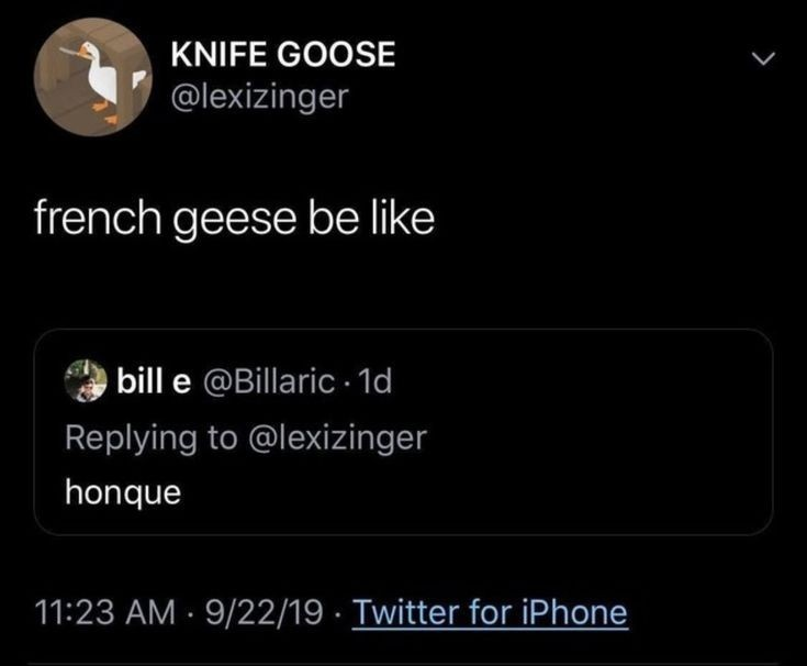 French Geese - meme
