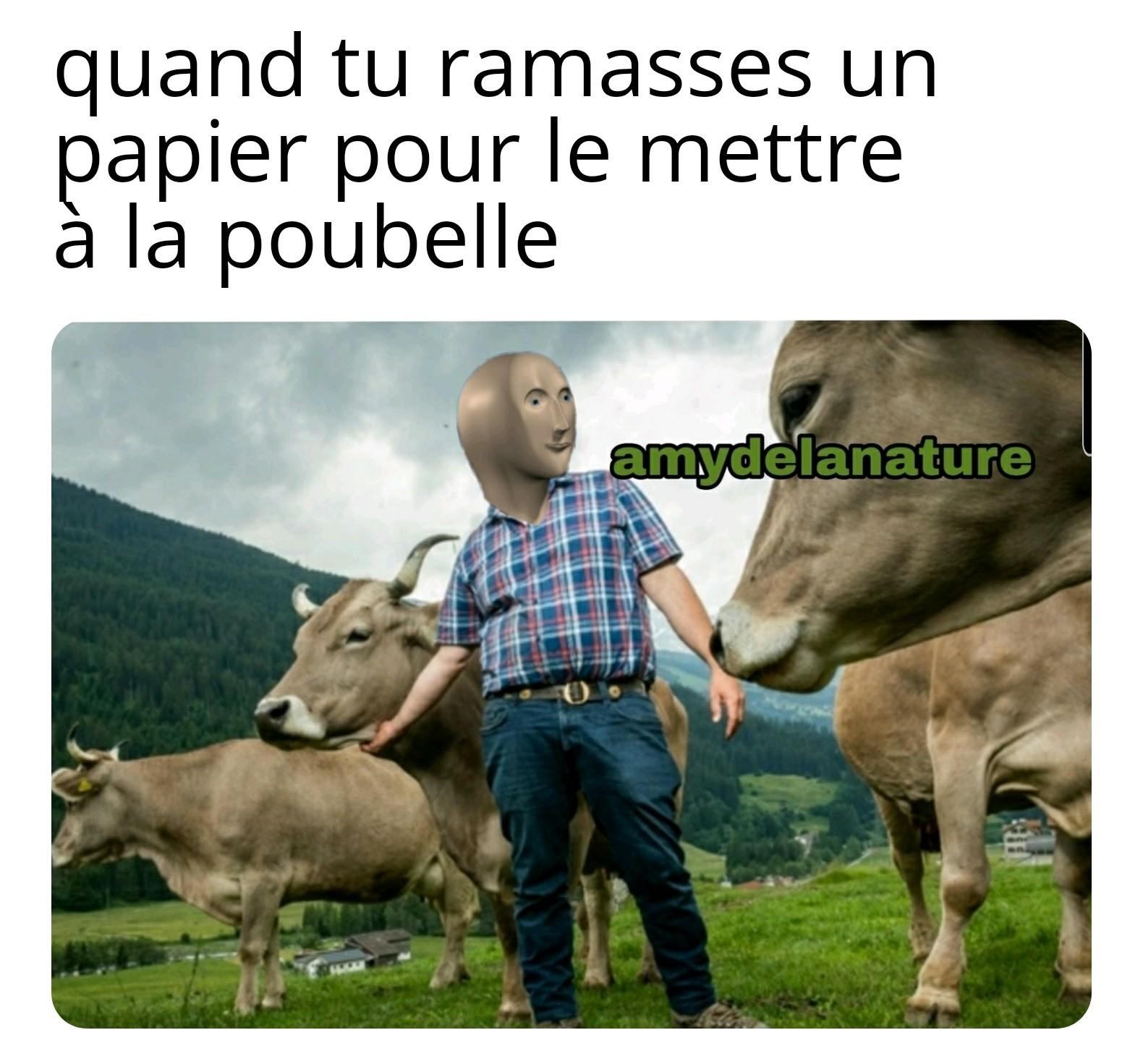 poubel - meme