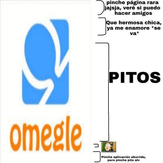 SALAMADRE - meme