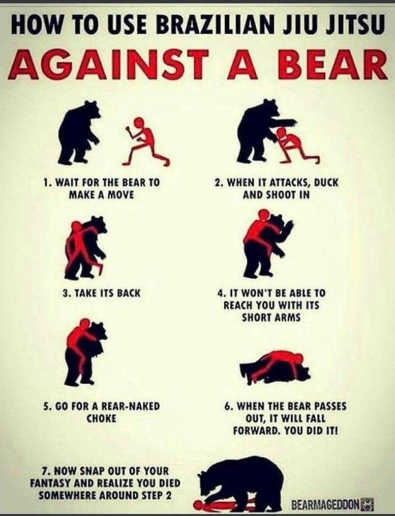 Bear defense tactic - meme