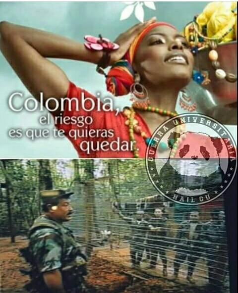 Las FARC - meme