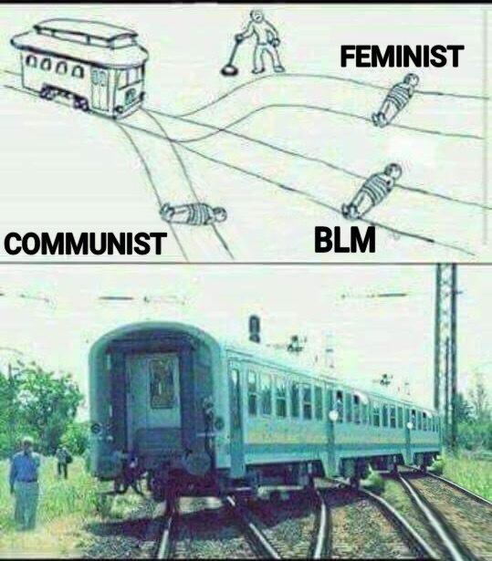 dongs in a trolley - meme
