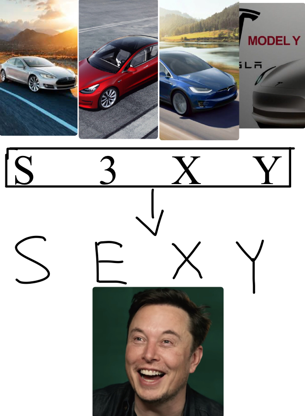 THE REAL REASON BEHIND TESLA'S MODEL CARS - meme