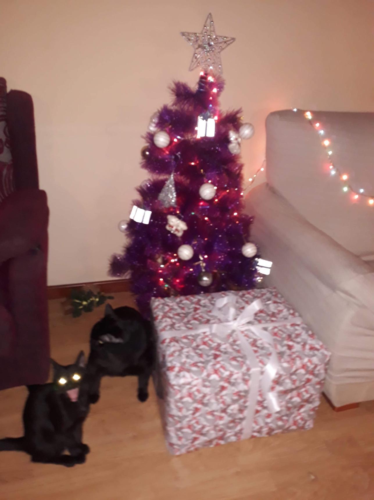 Navidad llegó - meme