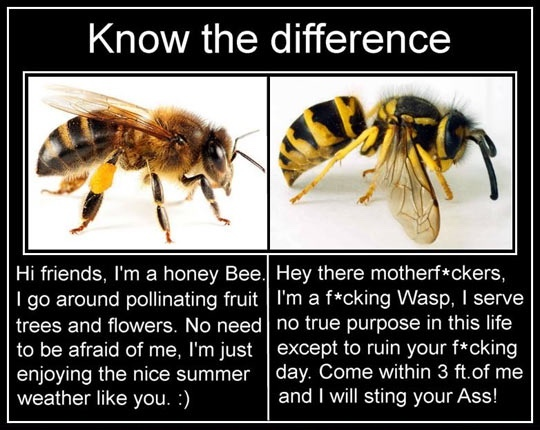 know the difference - meme