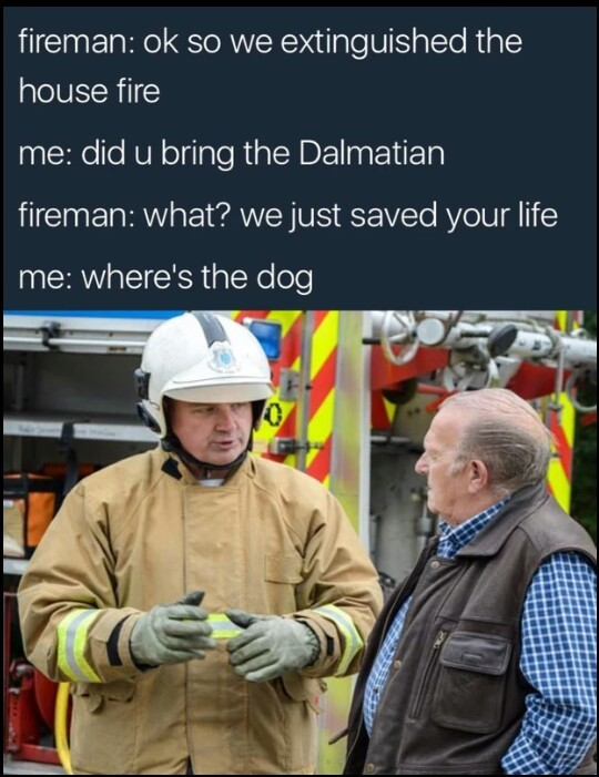 WHERE IS THE FUCKING DOG?! - meme
