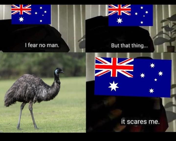 Emus mate - meme