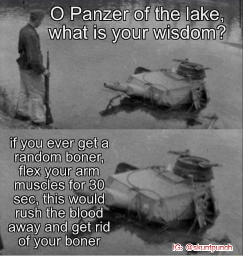 Oh Wise Panzer - meme